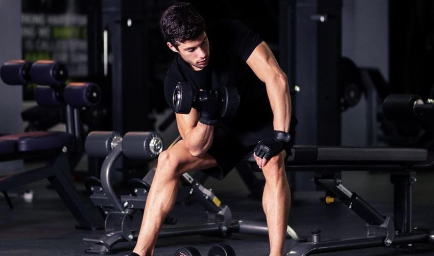 biceps triceps